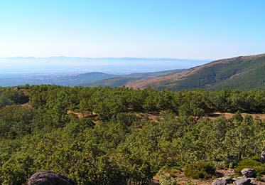 Mirando hacia la ciudad de Cáceres, muy cerca de Piornal